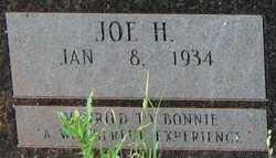 Joseph Haikel Joe Daywood