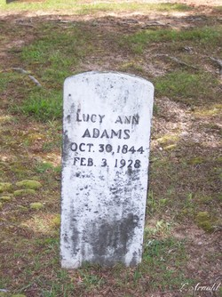Lucy Ann Adams