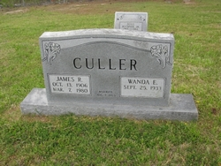 James Richard Culler