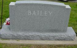 David B Bailey
