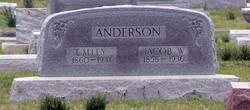 Barbara Emily <i>Anspach</i> Anderson