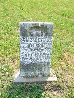 Elizabeth J Allison