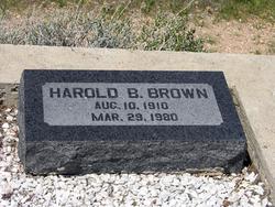 Harold B. Brown