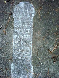 Holcombe Hamilton Harper