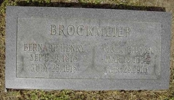 Viola <i>Gibson</i> Brockmeier