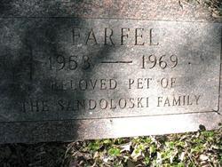 Farfel Sandoloski