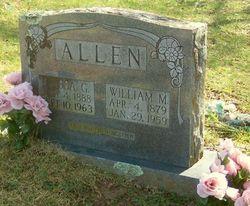 Elissa G Allen