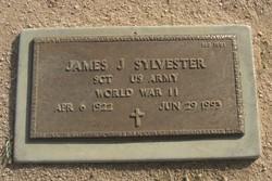James J Sylvester