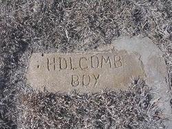 Boy Holcomb