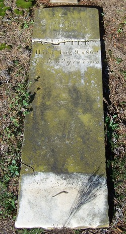 Mary Emaline <i>Polk</i> Little