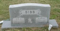 Ira J. Bibb