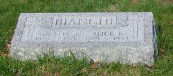 Alice L. Bianchi