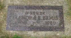 Elenora E <i>Schlaet</i> Bemis