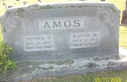 David Wylie Amos, Sr