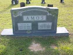David Wylie Amos, Jr