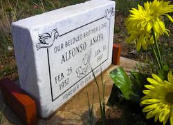 Alfonso Anaya
