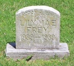 Lily Mae Frey