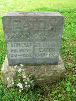 Rachel Agnes <i>Ping</i> Eaton