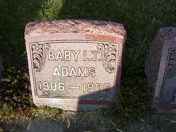 L. T. Adams