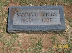 Sabina Gertrude <i>Hunter</i> Briggs