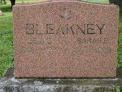 Sarah Ellen <i>White</i> Bleakney