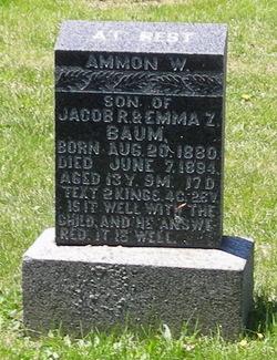 Ammon W Baum