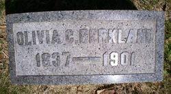 Olivia C Berkland