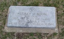 Audra D Boon