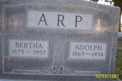 Adolph Otto Arp