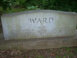 David Saunders Ward, Jr