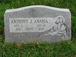 Anthony J. Anania
