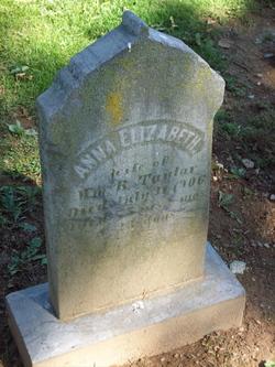 Anna Elizabeth Taylor