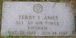 Terry L Ames