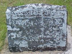 Mary M <i>Ridgeway</i> Anderson