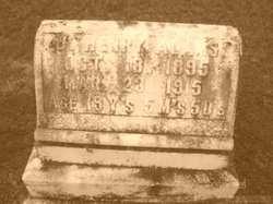 J. Henry Adams