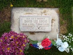 David Lee Lucas