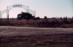 Survey Cemetery