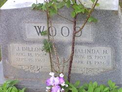 J Dillon Wood