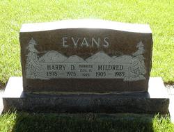 Harry Dewey Evans