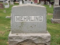 Daniel Mehrling