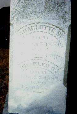 Charlotte S. Crocker