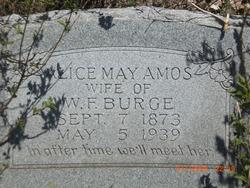 Alice May <i>Amos</i> Burge