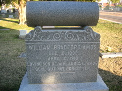 William Bradford Amos