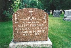 Albert William Finnegan