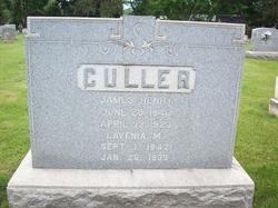 James Henry Culler