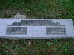 Albert Allen Wolfe