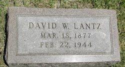 David W Lantz