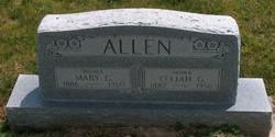 Mary Catherine <i>Zackmire</i> Allen
