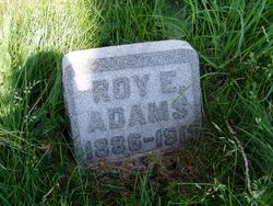 Roy E Adams