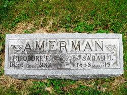 Theodore F. Amerman